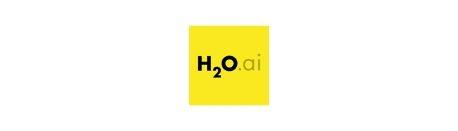 H20.AI